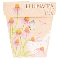 A Gift of Seeds - Echinacea
