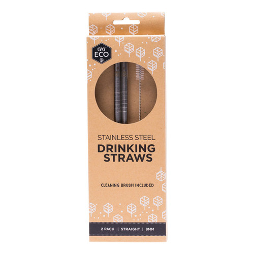 Straight Stainless Steel Straws (+Brush) x2